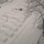 Iubesc iarna