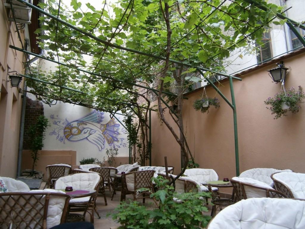 bohemia tea house