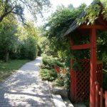 Miercurea fără cuvinte: Grădina Botanică din Cluj