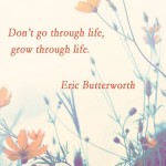 Don't go through life…