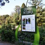 O seară relaxantă la Grădina Botanică din Bucureşti