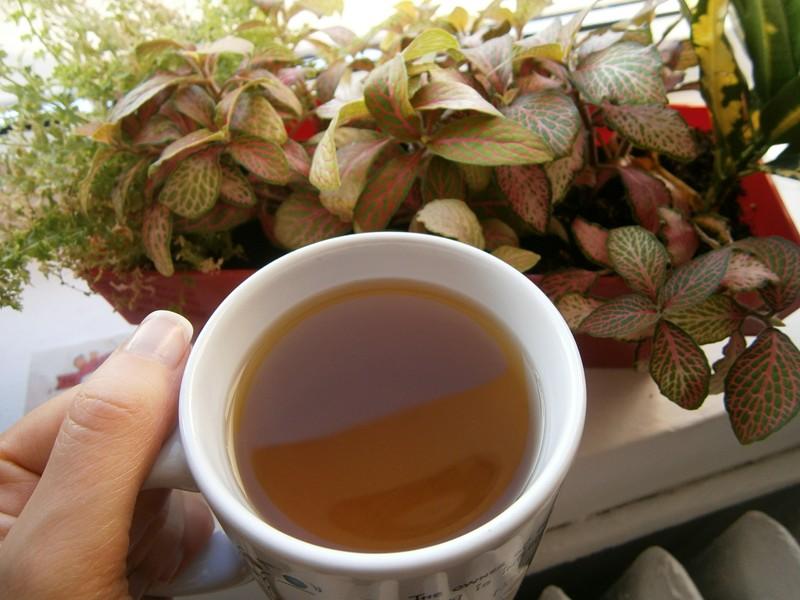 cana cu ceai langa flori