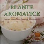 Plante aromatice – cultivare, gastronomie, cosmetică, efecte terapeutice