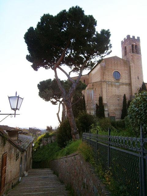 basilica-san-domenico-siena