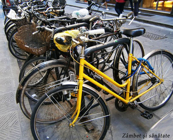 biciclete-in-florenta