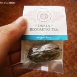 Artă într-o cană cu apă: ceaiul care înfloreşte