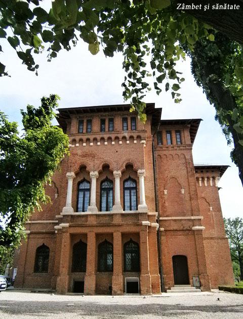 palatul-mogosoaia-ferestre
