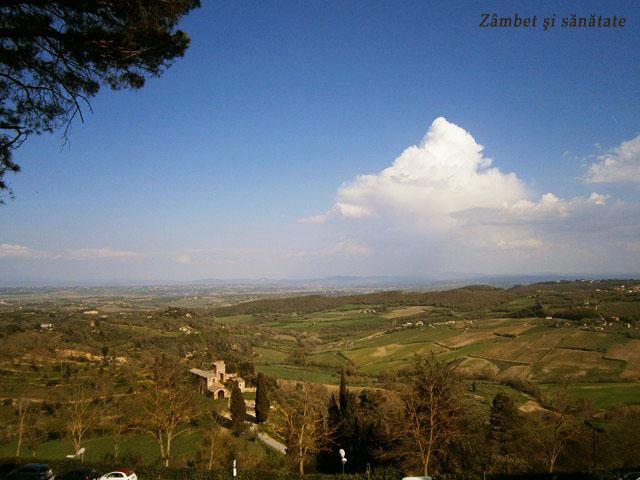 peisaj-din-montepulciano
