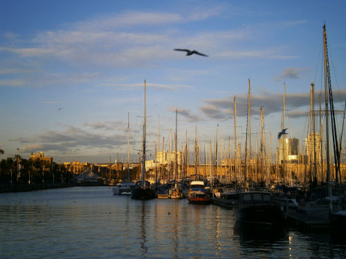 port-in-barcelona