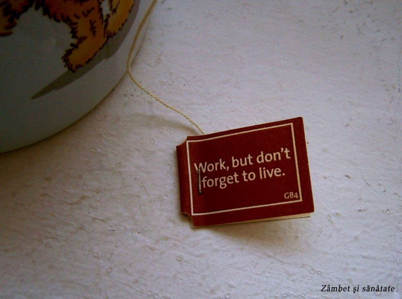 work-but-dont-forget-to-live-yogi-tea