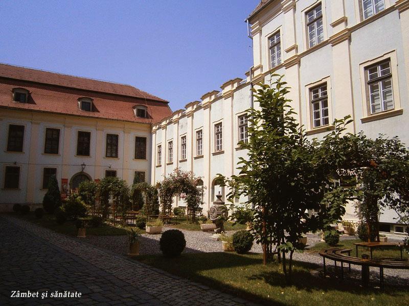 gradina-Palatului-Brukenthal