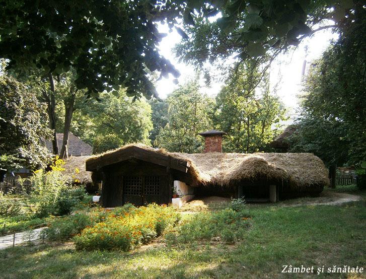 casa-la-muzeul-satului-dimitrie-gusti