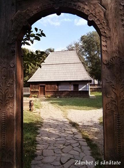 casa-si-poarta-muzeul-satului