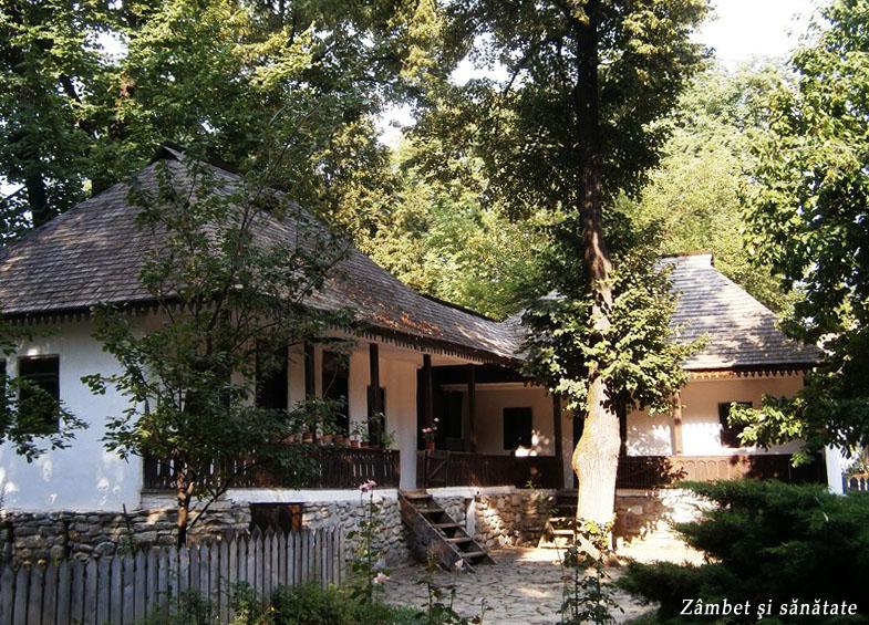 case-muzeul-satului-bucuresti