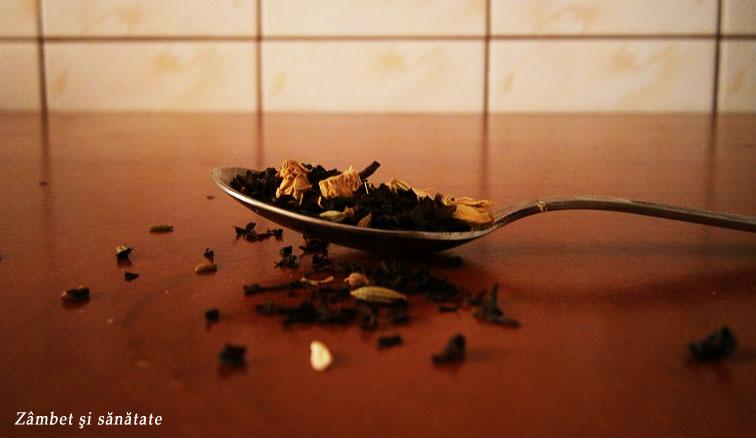 ceai-cu-condimente-indiene-doro-tea