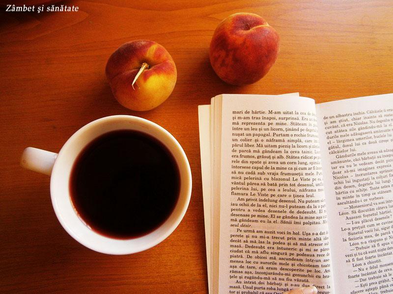 ceai-de-fructe-salutul-primaveri-d-oro-tea