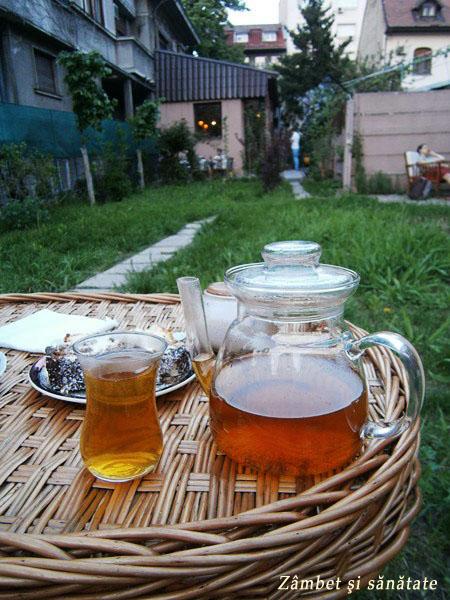 ceai-mentolat-si-prajitura-la-vlaicu