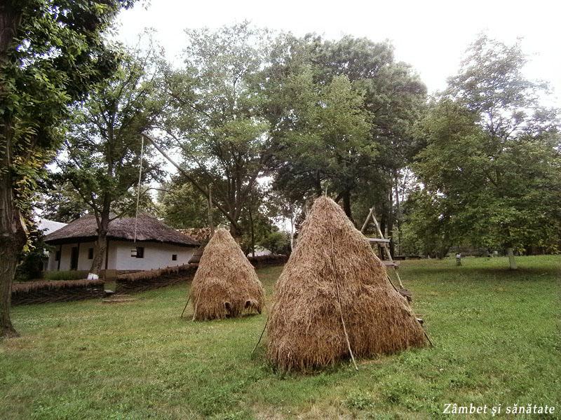 muzeul-satului-capite-cu-fan