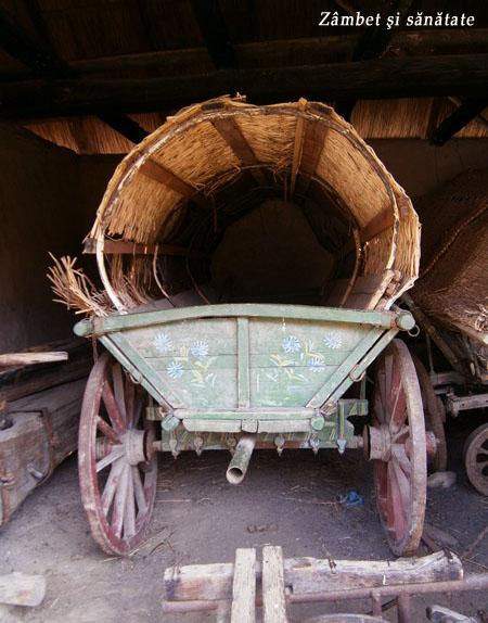 muzeul-satului-caruta