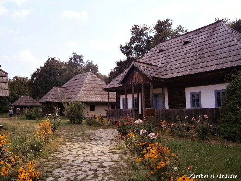 muzeul-satului-case