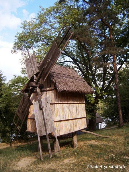 muzeul-satului-moara