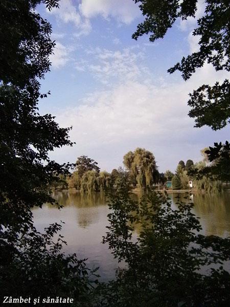 vedere-spre-parc-din-muzeul-satului
