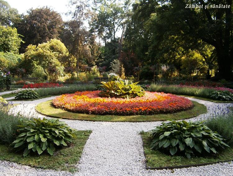 aranjament-gradina-botanica-varsovia