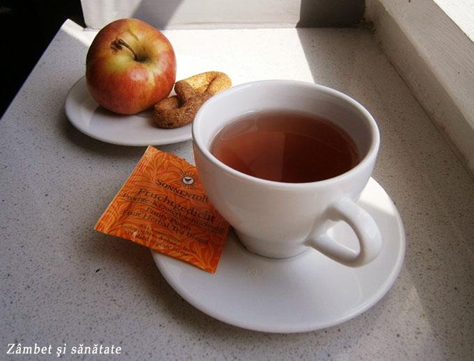 ceai-de-vara-poemul-fructelor-sonnentor