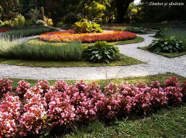 gradina-botanica-varsovia-aranjament-floral