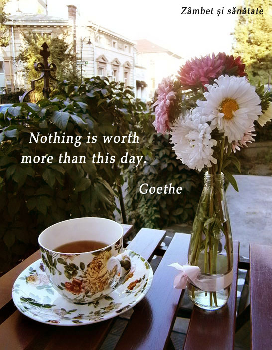 Nothing-is-worth-more-than-this-day-Goethe