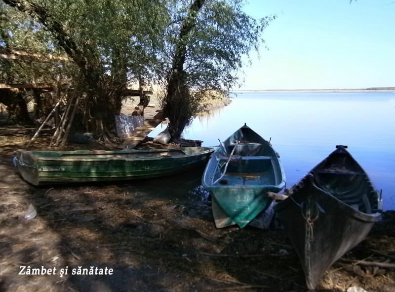 barci-manastirea-saon