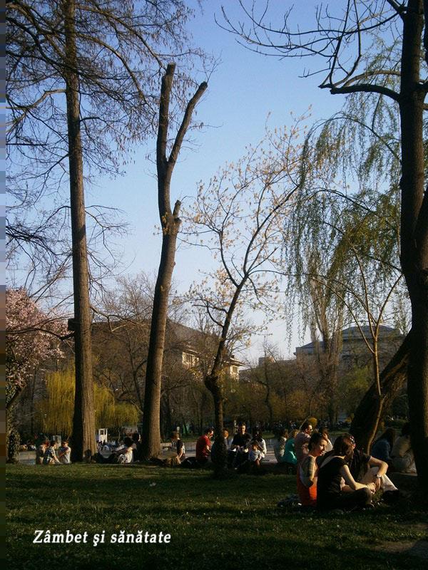 primavara-in-parcul-cismigiu-bucuresti