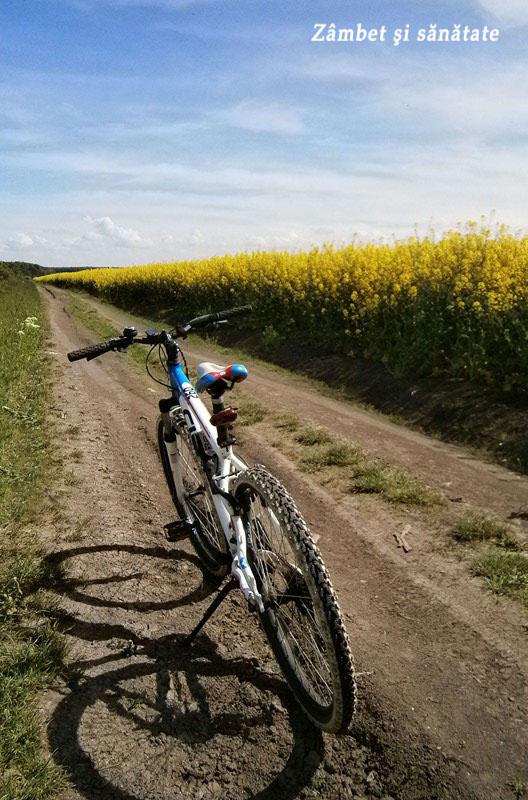 bicicleta-pe-drum