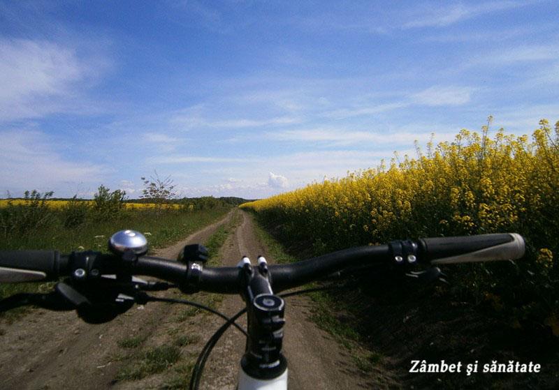 cu-bicicleta-spre-corbeanca