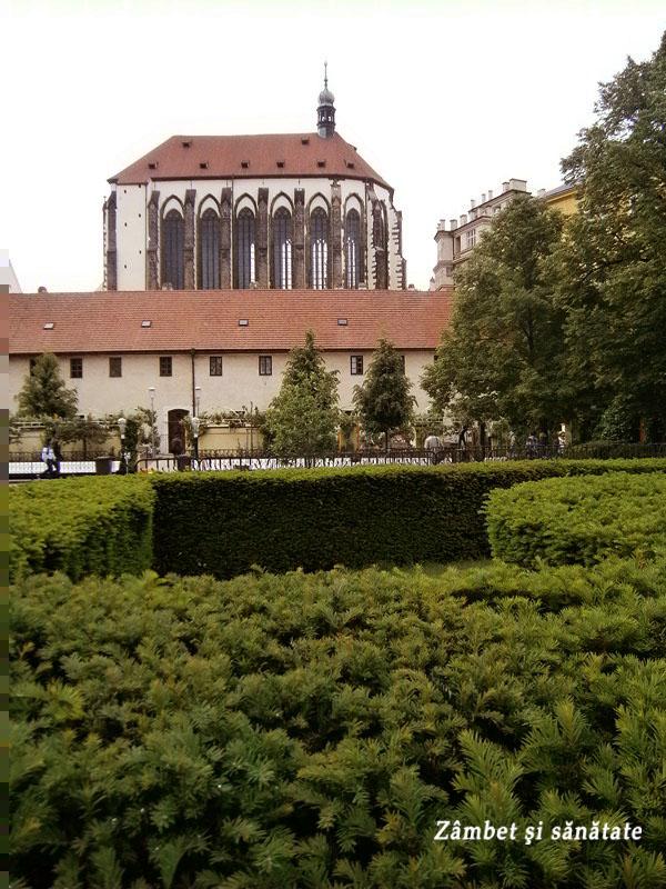 gradina-franciscana-praga