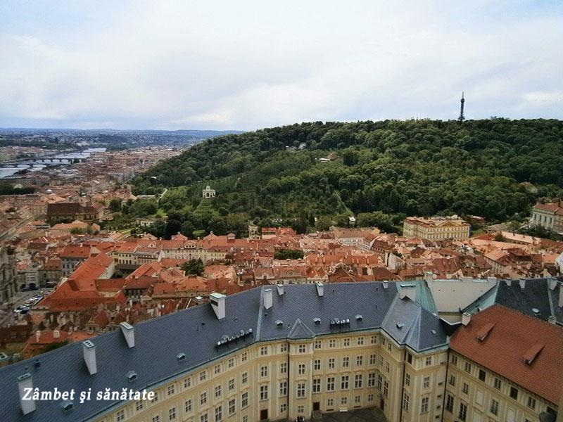 panorama-praga-de-la-catedrala-sf-vitus