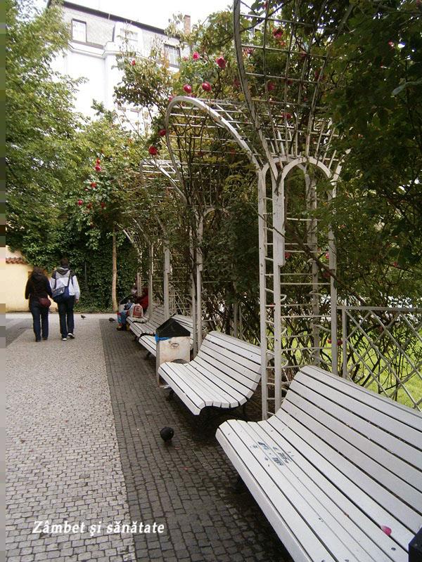 parc-gradina-franciscana-praga