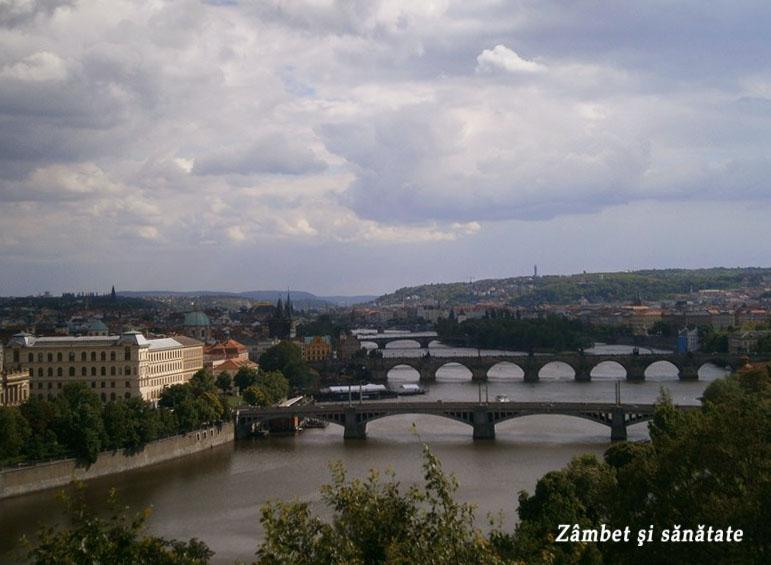 podurile-peste-viltava-praga