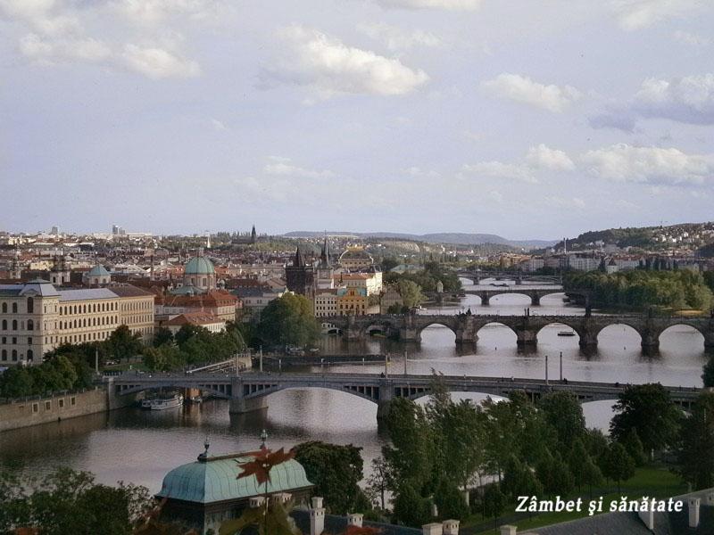podurile-praga-vazute-din-parcul-letna