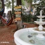 Oază de relaxare în mijlocul capitalei: Grădina de citit de la Biblioteca Metropolitană (foto)