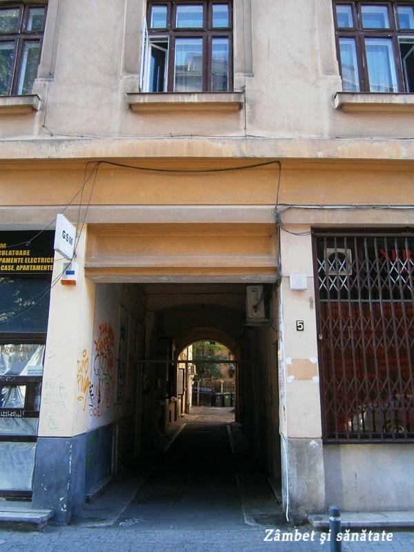 Casa-Ion-I.-C.-Brătianu-intrarea-prin-pasaj