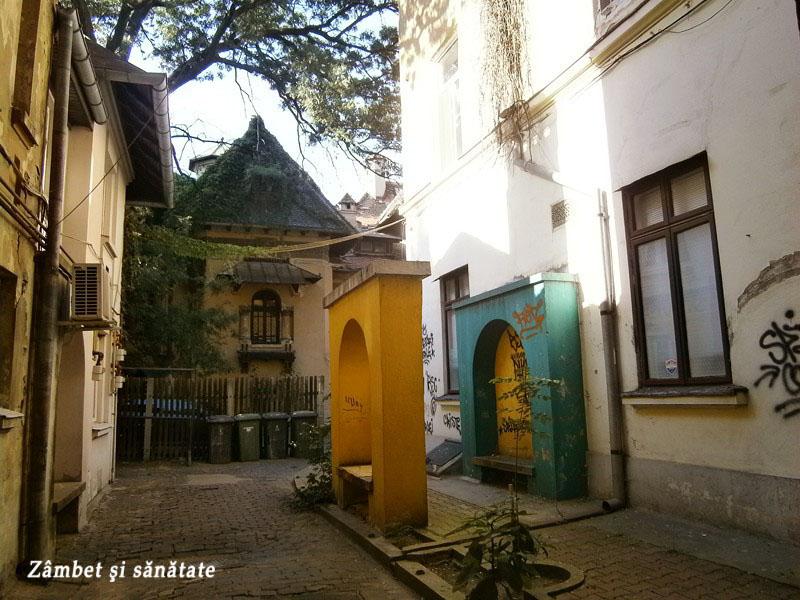 pasaj-spre-Casa-Ion-I.-C.-Brătianu-bucuresti