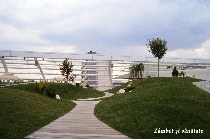promenada-mall-terasa-spatiu-verde.