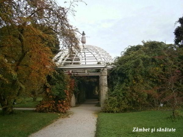 gradina-botanica-munchen-pavilion
