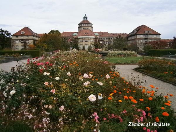 institutul-botanic-gradina-botanica-munchen