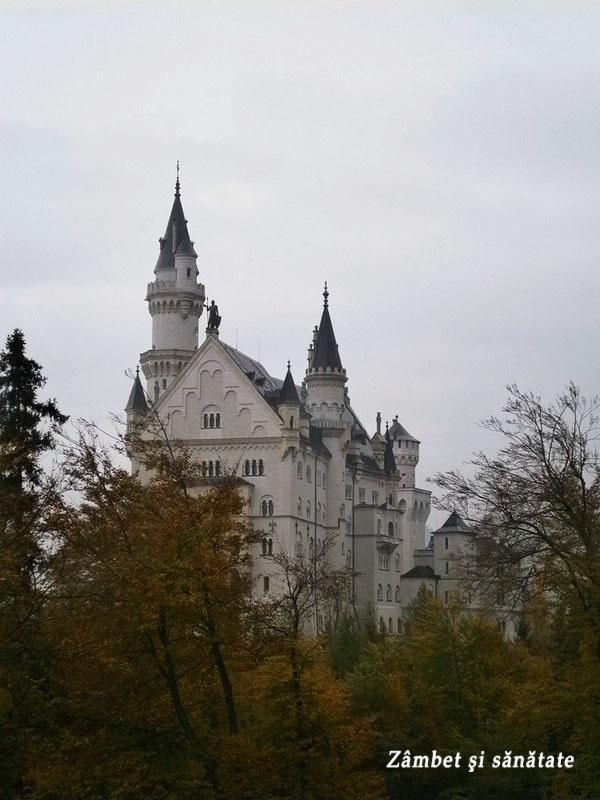 neuschwanstein-castel