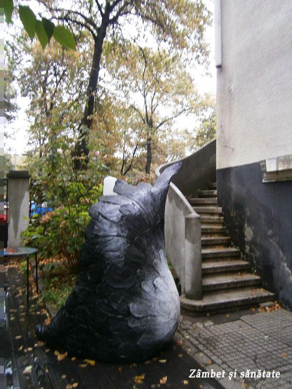 scari-galeria-IX