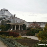 sere-la-gradina-botanica-munchen