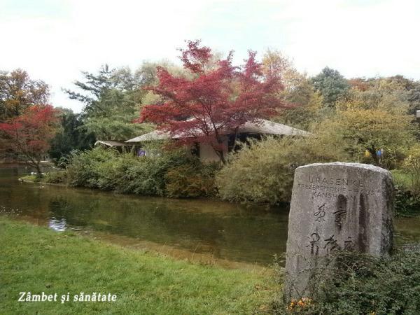 templul-japonez-Grădina-Englezească-Munchen