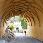 Castelul-Hohenschwangau-culoar